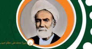 معلّم حبیبآبادی، مورخ گمنام